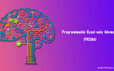 Programmable Read-Only Memory(PROM)